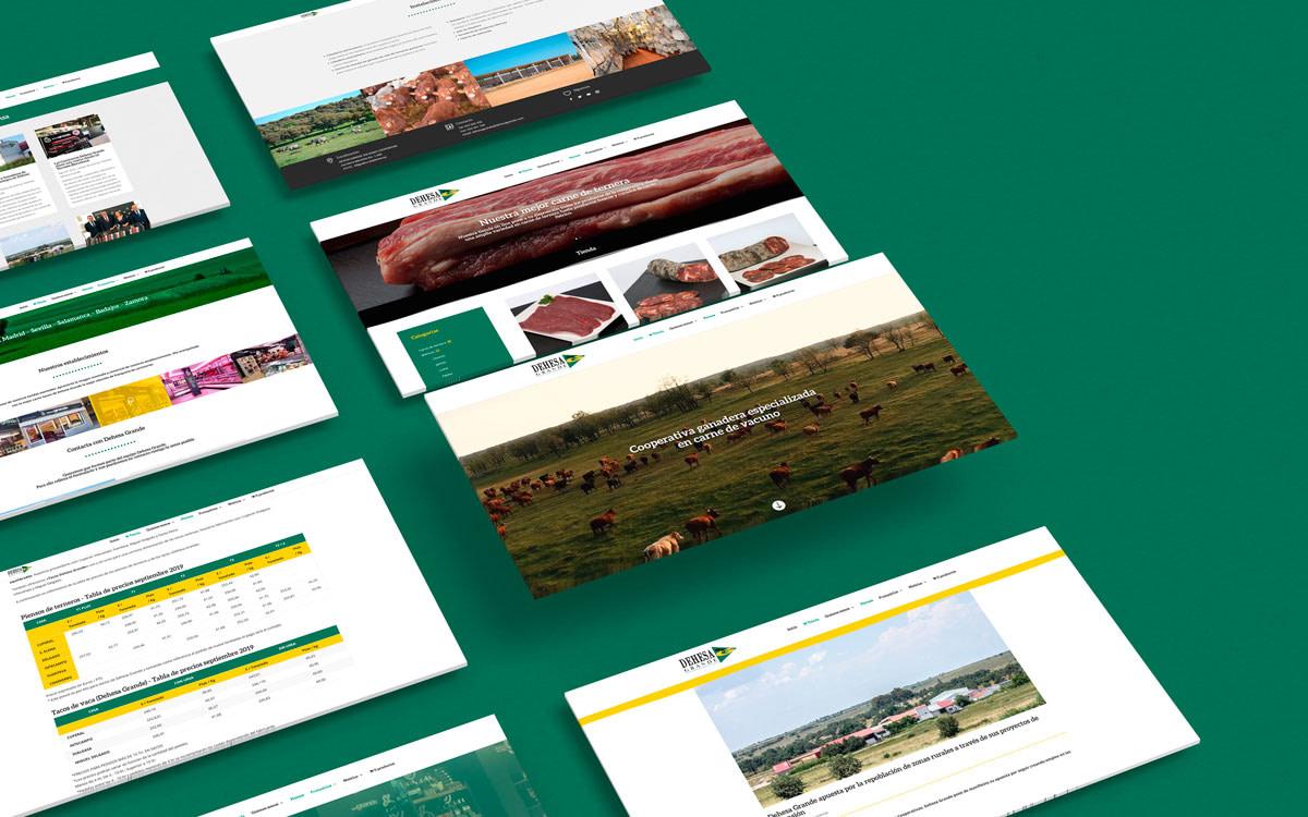 Diseño web - Cooperativa ganadera Dehesa Grande