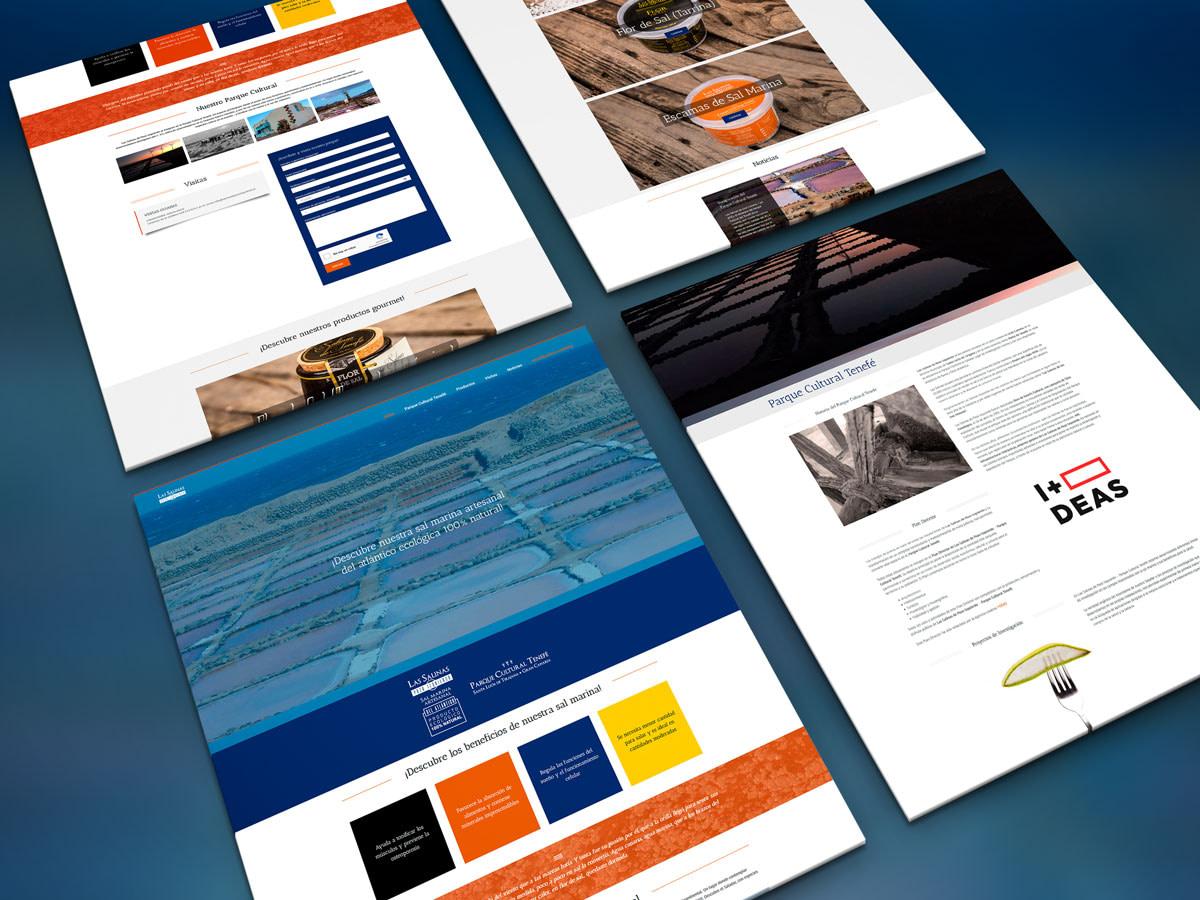 Diseño de pagina web - Las Salinas de Pozo Izquierdo